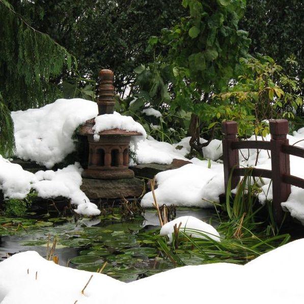 Ogród w Stylu Japońskim