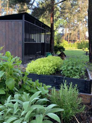 W moim ogrodzie rowniez ogrod warzywny :)